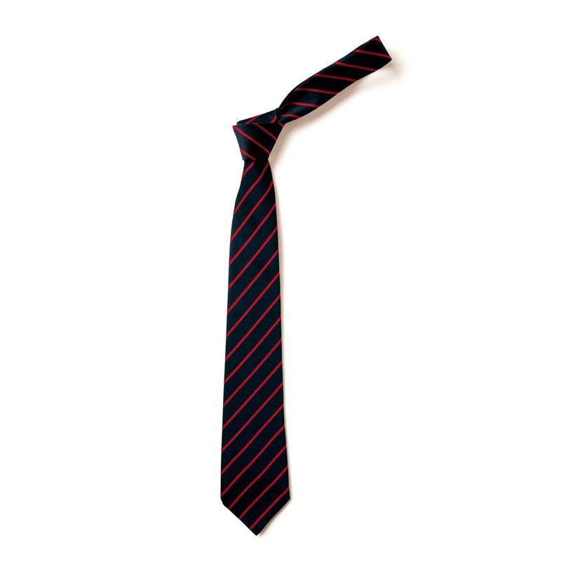 School Ties, available with Elastic Neck or standard 39""